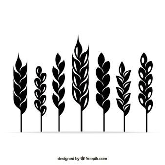 Wheat ears symbole