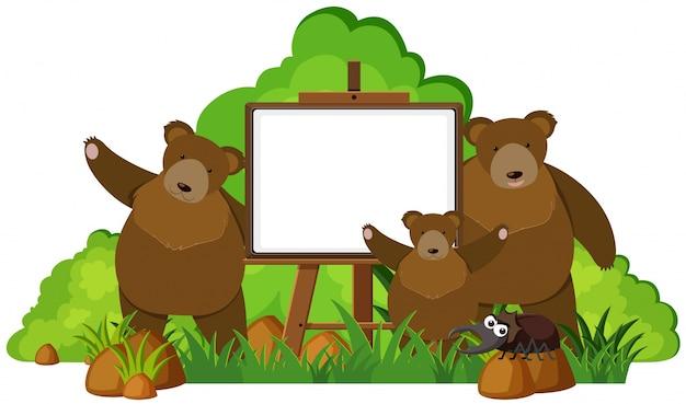 Whiteboard mit drei grizzlybären