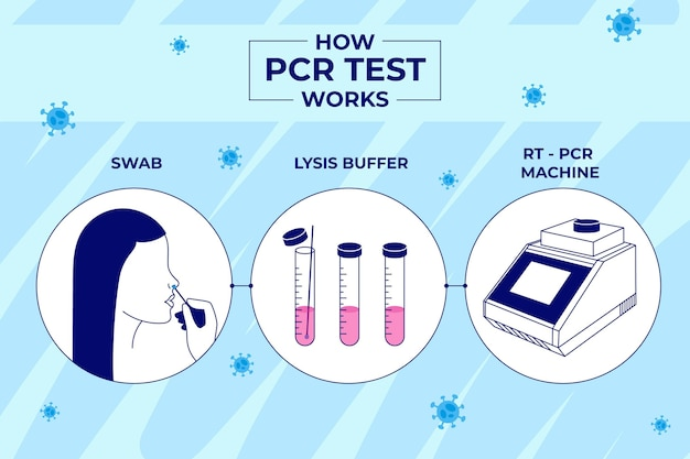Wie pcr test funktioniert