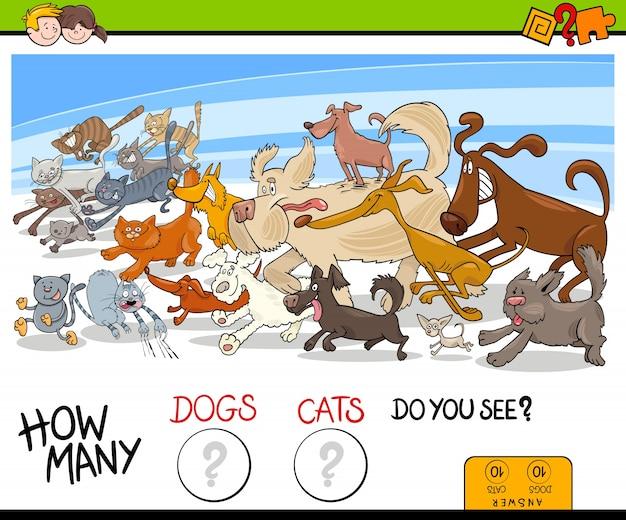 Wie viele hunde und katzen aktivität spiel