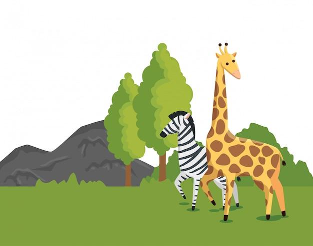 Wilde animls des zebras und der giraffe mit naturbäumen