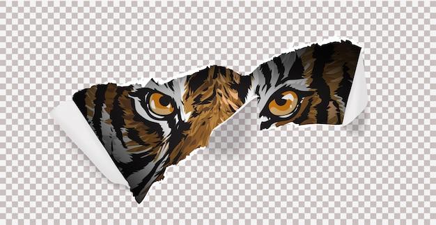 Wilde jagd mit tiger und klaue mark illustration.