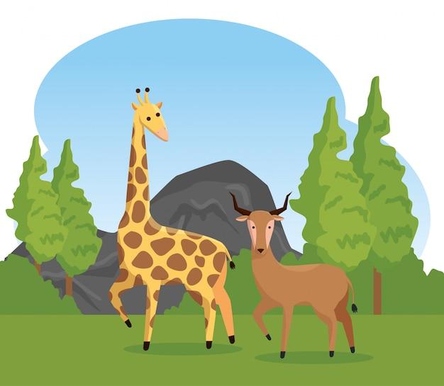 Wilde tiere der giraffe und der rotwild mit bäumen