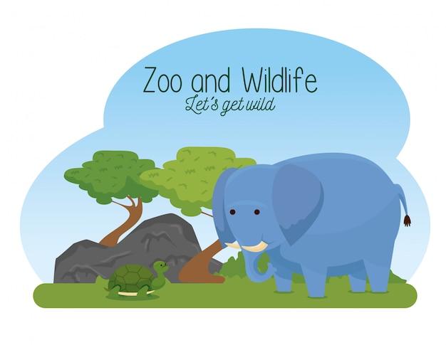 Wilde tiere des elefanten und der schildkröte mit bäumen