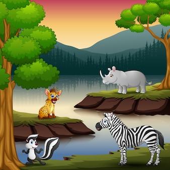 Wilde tiere genießen die natur am see