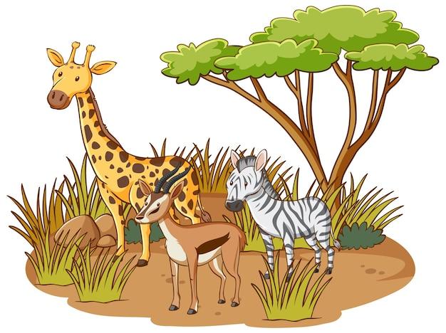 Wilde tiere im savannenwald auf weißem hintergrund