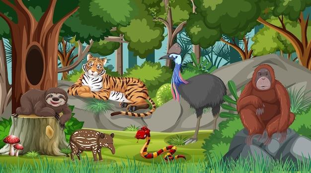 Wilde tiere in der waldszene mit vielen bäumen