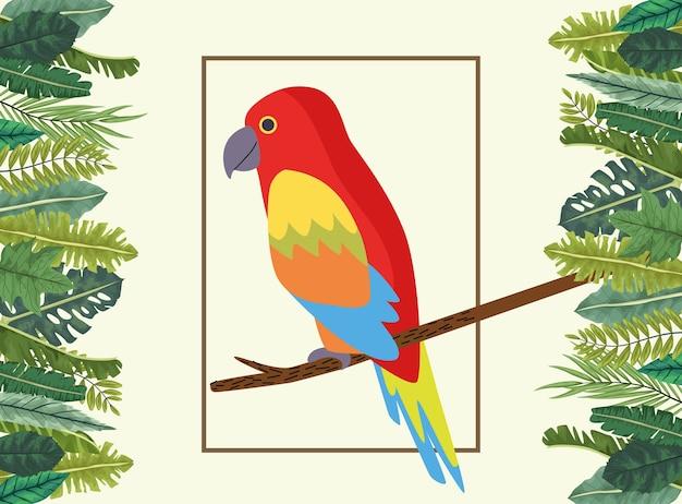 Wilde tropische papageienvogelnatur im quadratischen rahmen