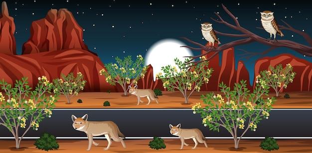 Wilde wüste mit langer straßenlandschaft bei nachtszene