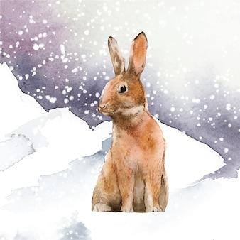 Wilder hase in einem winterwunderland