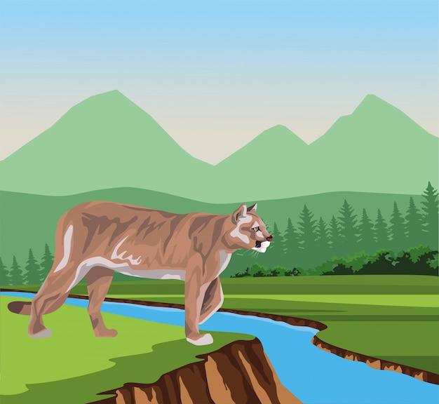 Wilder puma in der dschungelszenenillustration