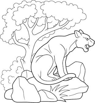 Wilder puma