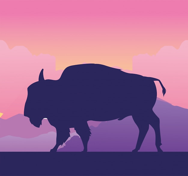 Wildes büffeltier in der feldlandschaftsillustration