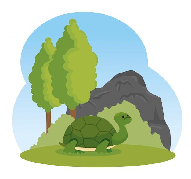 Wildes tier der schildkröte mit bäumen und büschen