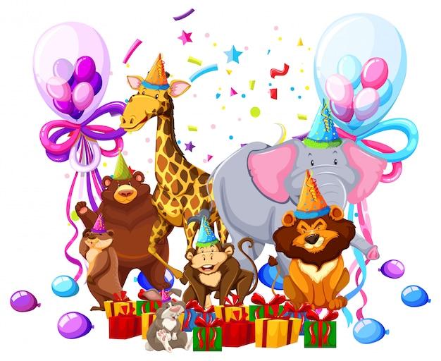 Wildes tier feiern geburtstag