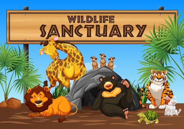 Wildlife sanctuary banner und tiere