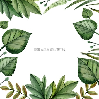 Wildpflanzen-aquarellkranz