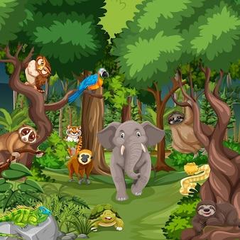 Wildtier-cartoon-figur in der waldszene