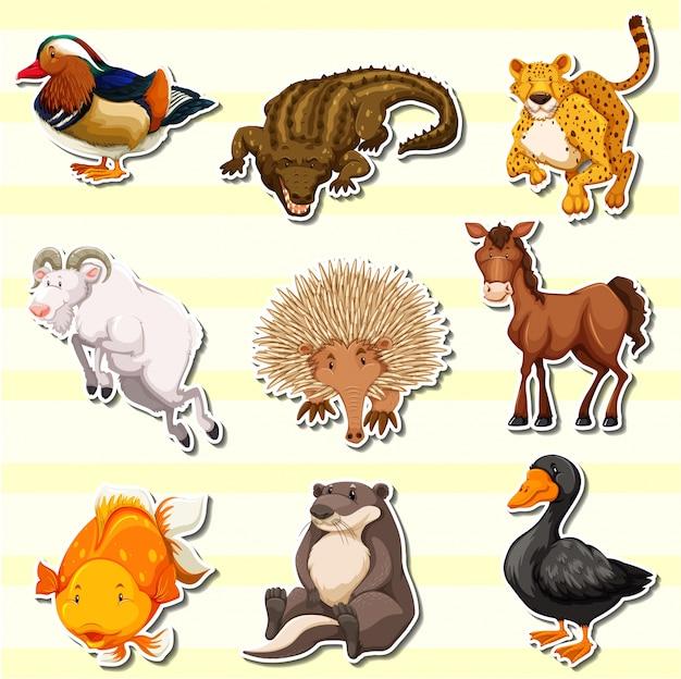Wildtiere im aufkleber-set