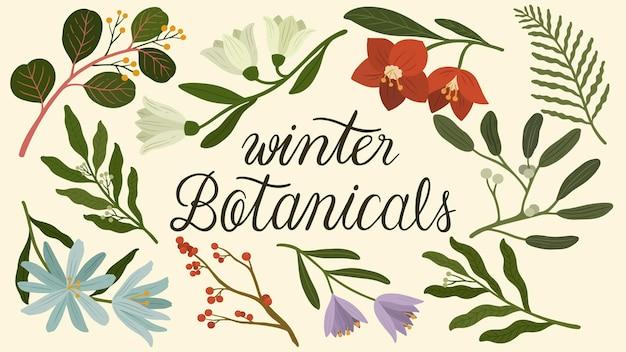 Winter botanicals wallpaper illustration