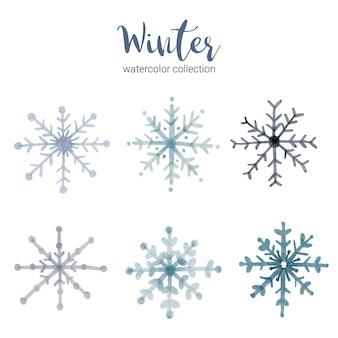 Winteraquarellsammlung mit zweigen, die kühles winteraquarell symbolisieren.