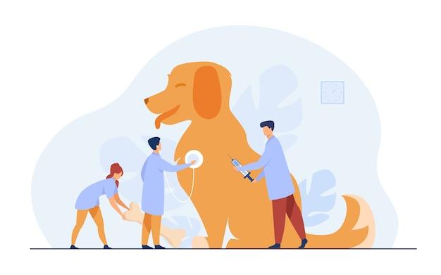 Winzige ärzte, die hund im tierarztbüro pflegen