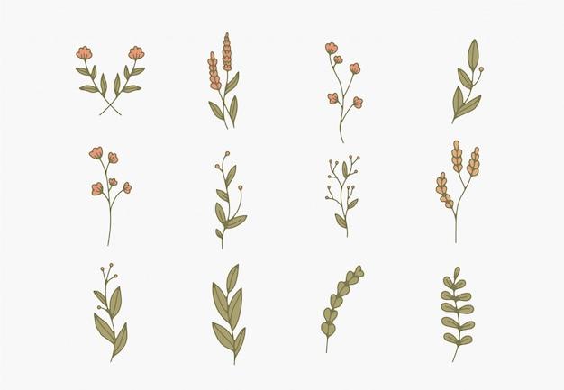 Winzige einfache botanische illustrationen, strichzeichnungen, minimale designelemente. elegante und zarte pflanzenkritzeleien