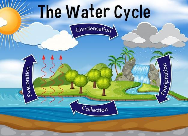 Wissenschaft des wasserkreislaufs