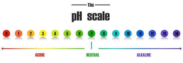 Wissenschaft ph-skala vorlage