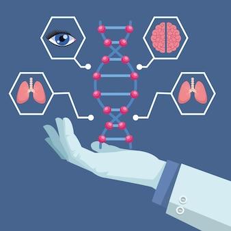 Wissenschaftler handheben