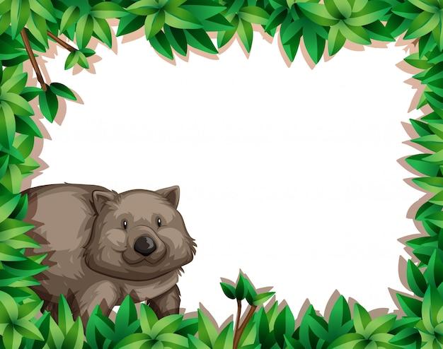 Wombat auf naturrahmen