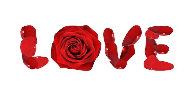 Wortliebe aus rosenblättern isoliert auf weißem hintergrundvektor