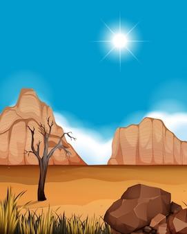 Wüstenszene mit schluchten und feld