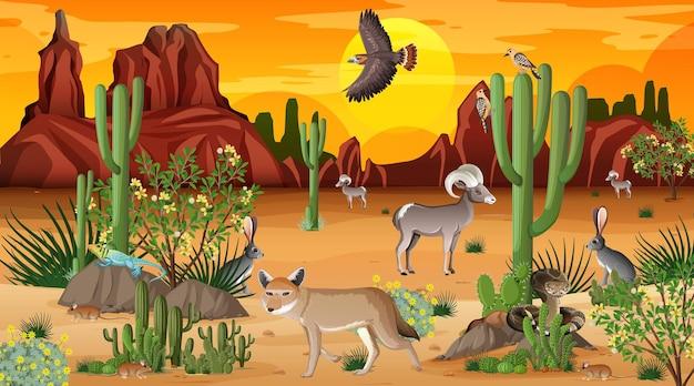 Wüstenwaldlandschaft bei sonnenuntergang mit wilden tieren