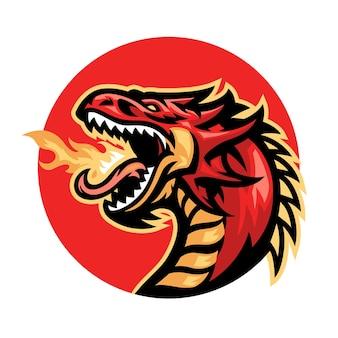 Wütendes feuerspucken des drachenmaskottchens