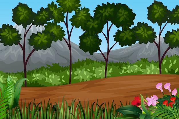 Wunderschöne landschaft mit pflanzen und bäumen