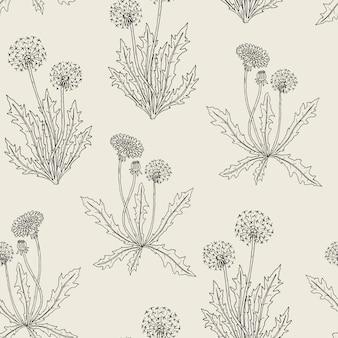 Wunderschönes nahtloses botanisches muster mit blühenden löwenzahnpflanzen, blumen, samenköpfen und blättern, die im retro-stil von hand gezeichnet wurden.