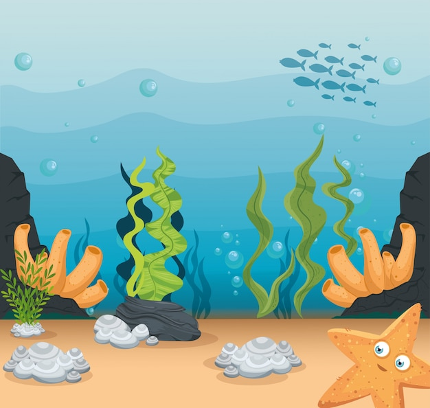 Xxx und wilde meerestiere im ozean, meeresweltbewohner, niedliche unterwasserlebewesen, unterwasserfauna der tropen