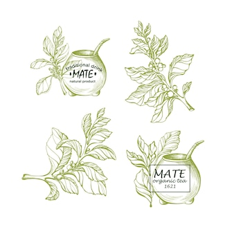 Yerba mate nationales traditionelles getränk erbal tee mit metallstroh aus kalebassenkürbis set
