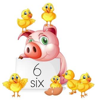 Zählen nummer sechs mit schwein und küken