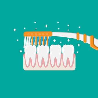 Zahnbürste reinigt die zähne. zähne putzen.