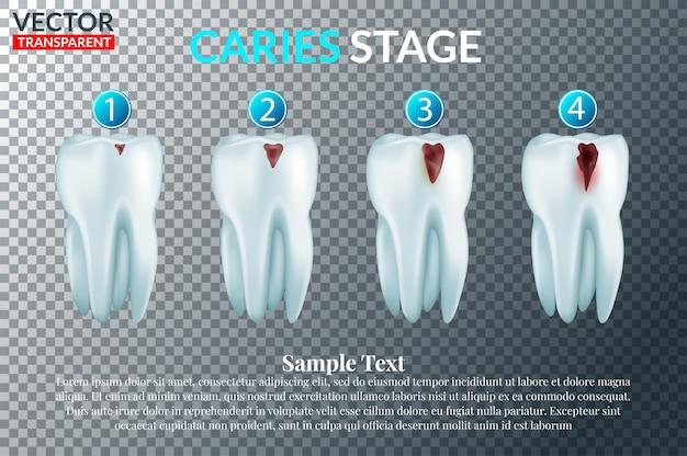 Zahnheilkunde und stomatologie