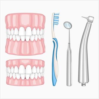 Zahnmedizinischer vektorillustrationssatz
