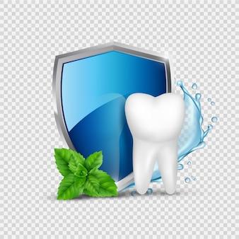 Zahnschutz. weißzahn, schild und minze, wasserspritzer. gesunde zahnärztliche konzeptillustration. zahnschutz für zahn- und schildschutz