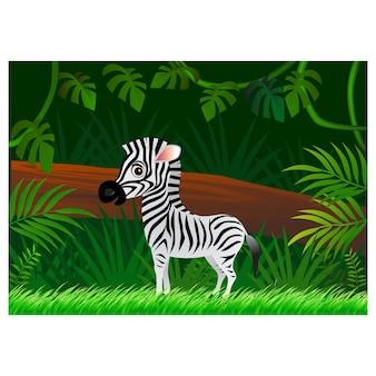 Zebra-cartoon auf waldhintergrund