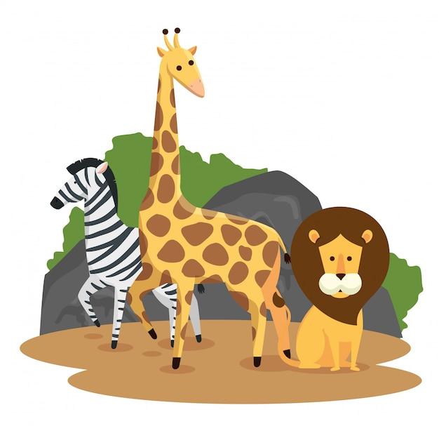 Zebra mit wilden tieren der giraffe und des löwes
