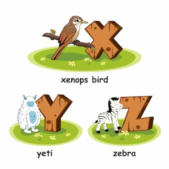 Zebra yeti xenops vogel holz alphabet tiere