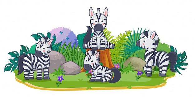 Zebras spielen zusammen im garten