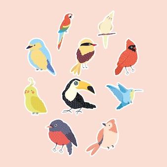 Zehn vogelarten setzen tiere