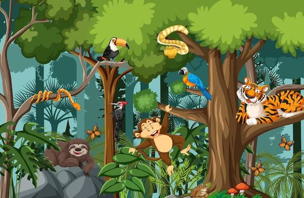 Zeichentrickfiguren des wilden tieres in der waldszene